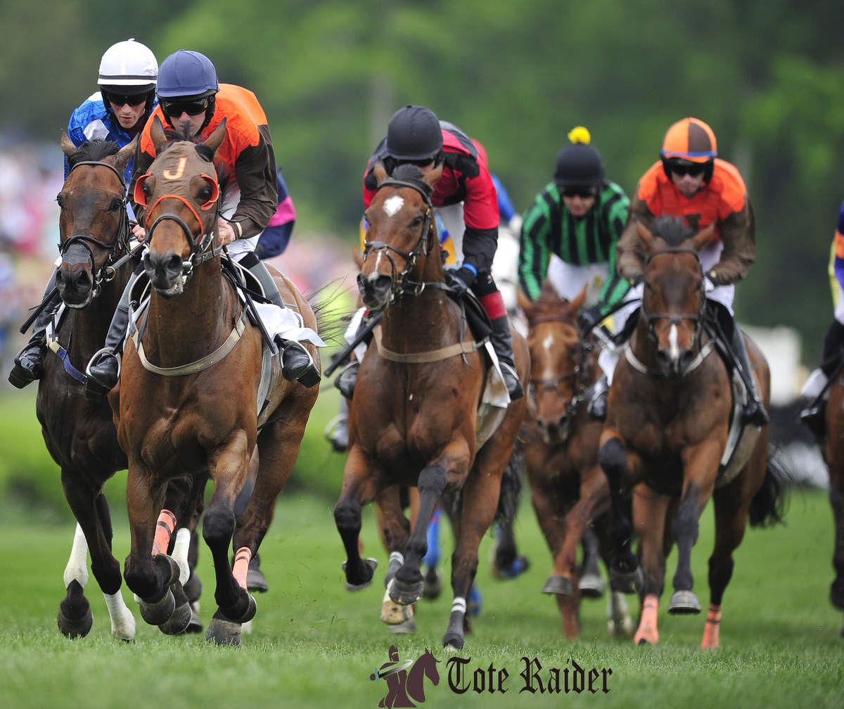 Horse Racing Systems - How to Use Them to Make Money