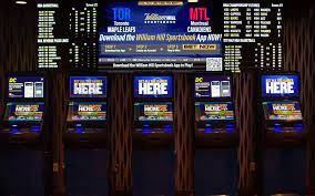 The Sports Betting Professor - Is It Just Another Betting System That Doesn't Work